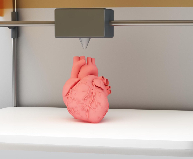 3d печать человеческих сердец
