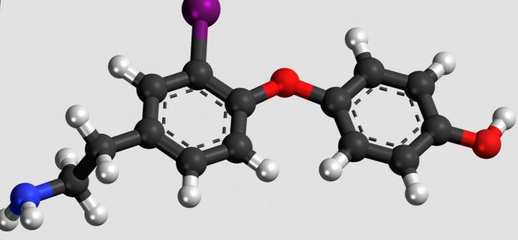 Тироксин и нехватка йода в организме