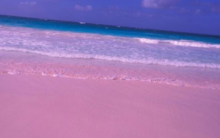 Розовый пляж – богемный отдых и дайвинг
