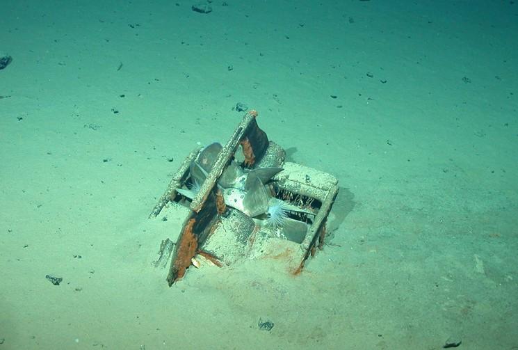 Фотография винта корабля Каир на дне Атлантики
