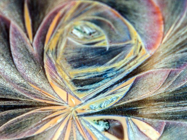 Узор образованый тонкой плёнкой кристаллов