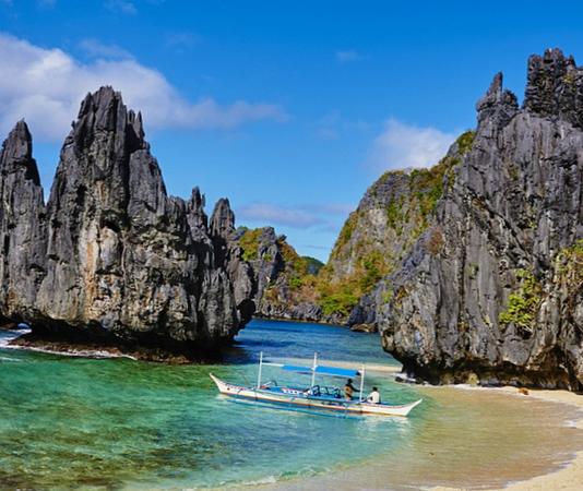 Филиппины - их флора