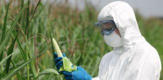 Химические вещества в пище
