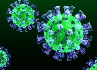 3Д модель коронавируса MERS CoV