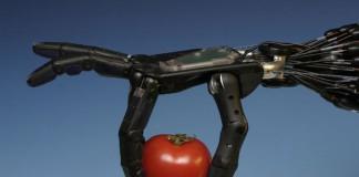пример мышц робота