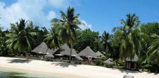 Описание острова Мадагаскар