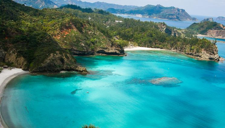 Природа архипелага Огасавара