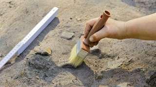 Археологи приблизились к разгадке тайны библейского Ковчега Завета