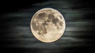 Япония присоединяется к новой лунной программе NASA
