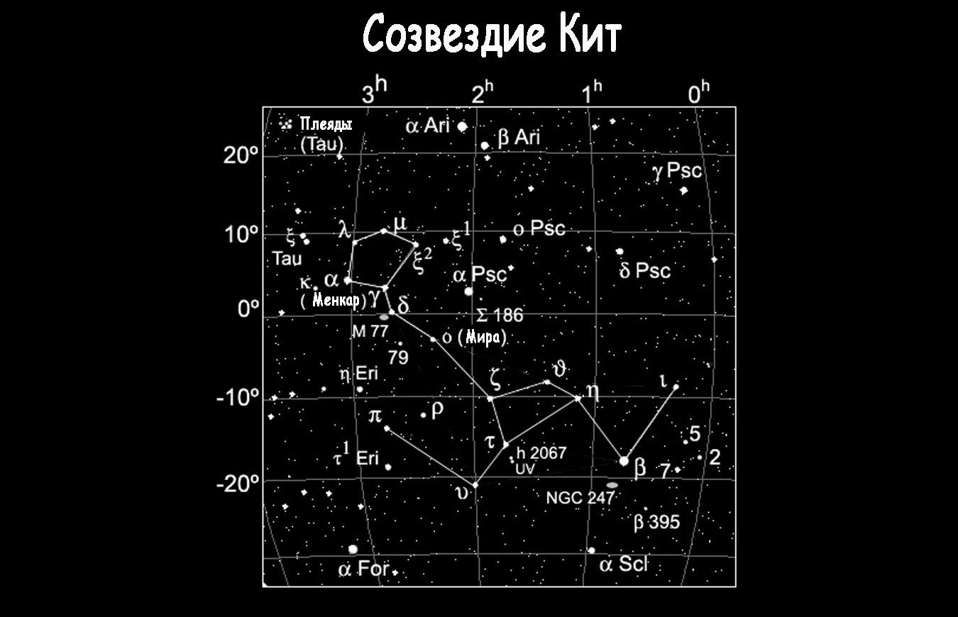 Созвездие Кит