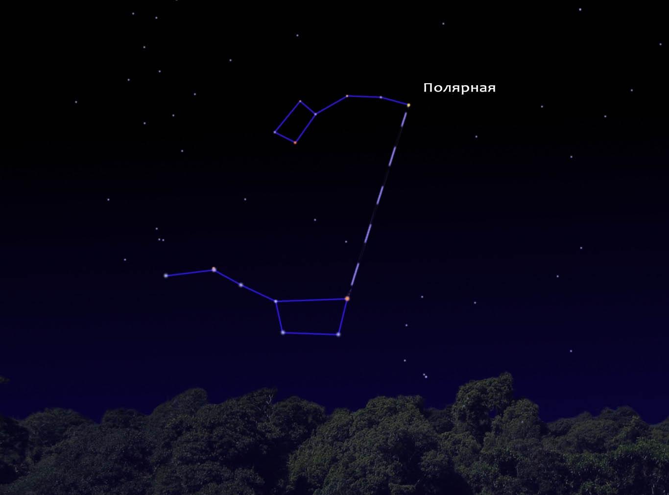 Как найти Полярную звезду?