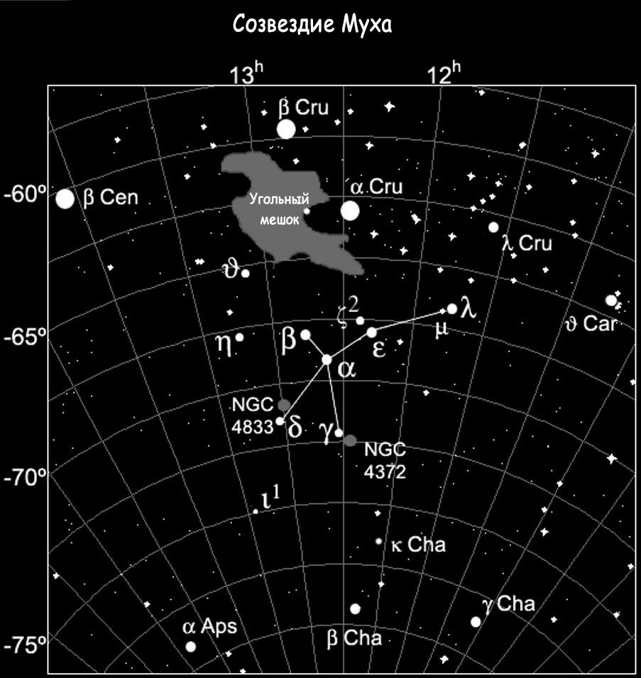 Созвездие Муха