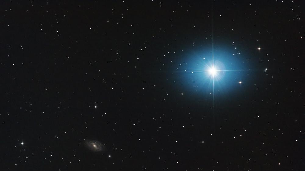 Звезда Фекда