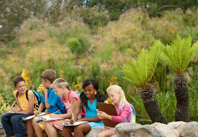 Широкий выбор экскурсий для детей школьного возраста