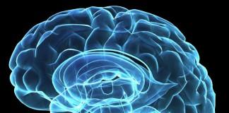 Основные болезни мозга