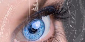 человеческое зрение и из чего состоит глаз