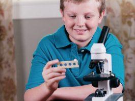 Что в световой микроскоп можно увидеть