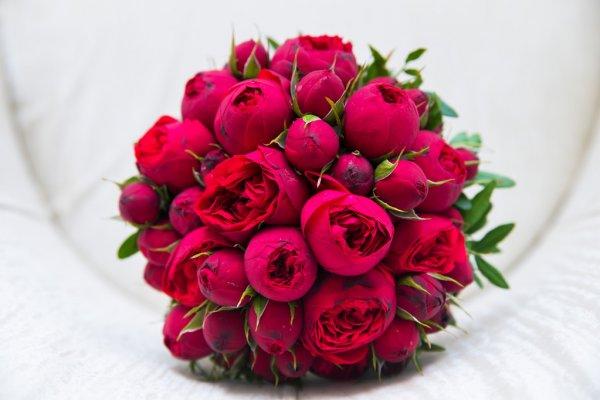 Интернет-магазин цветов в Киеве