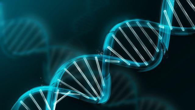 проект геном человека