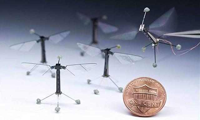 Самый маленький беспилотник в мире RoboBee