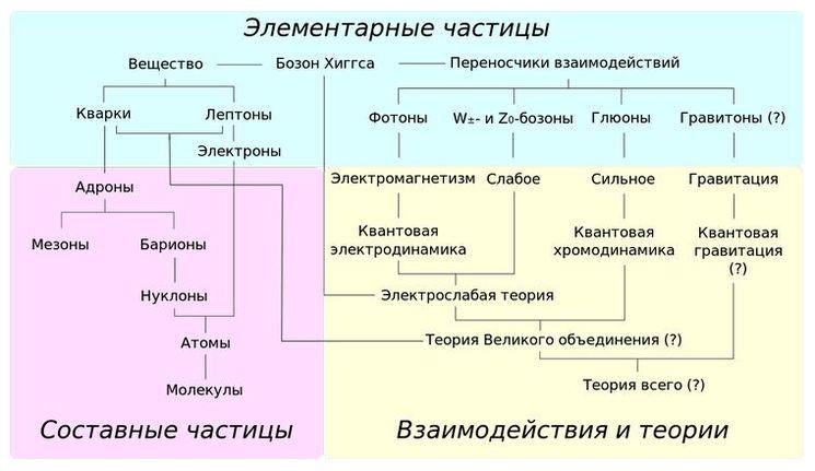 Обзор различных семейств элементарных и составных частиц