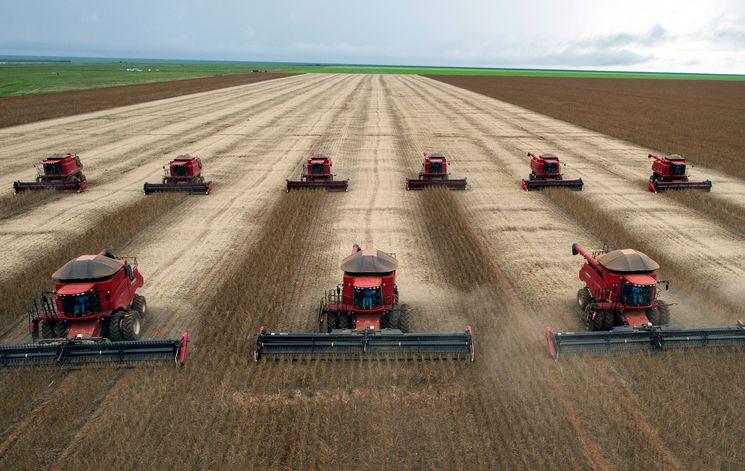 ГМО на службе сельского хозяйства