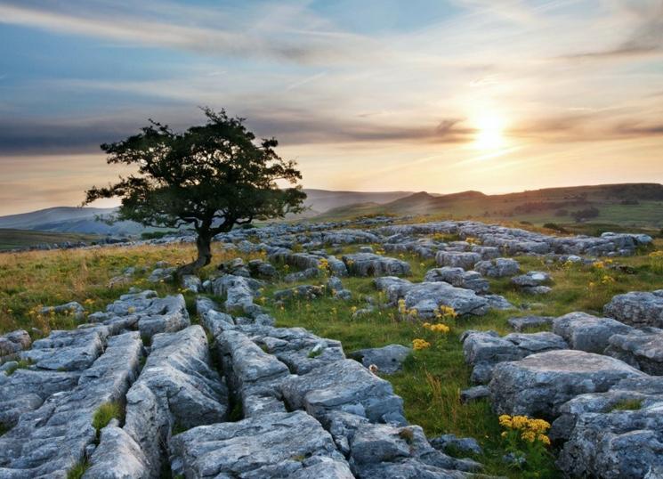 Камни известняка на юге Англии
