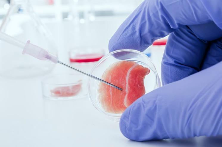 Лечение цирроза печени стволовыми клетками