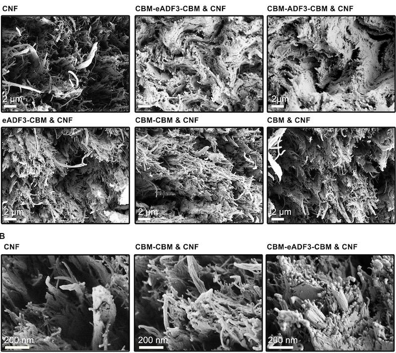 Микрочастицы групп композитов разных размеров