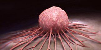 Нобелевская премия по медицине за вклад в лечение рака