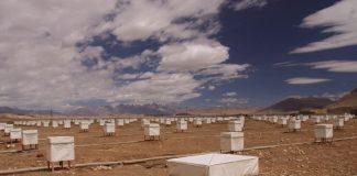 Оборудования Tibet air shower array