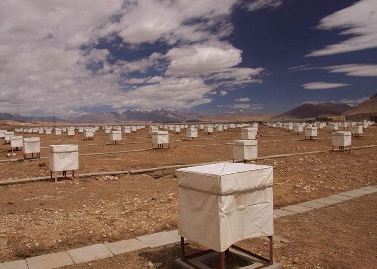 oborudovaniya-tibet-air-shower-array.jpg