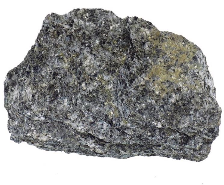 Образец аспидного сланца