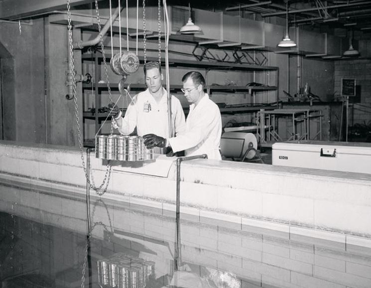 Погружение продуктов в радиационную камеру