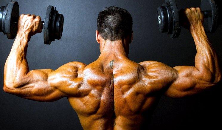 Помогают ли анаболики для роста мышц