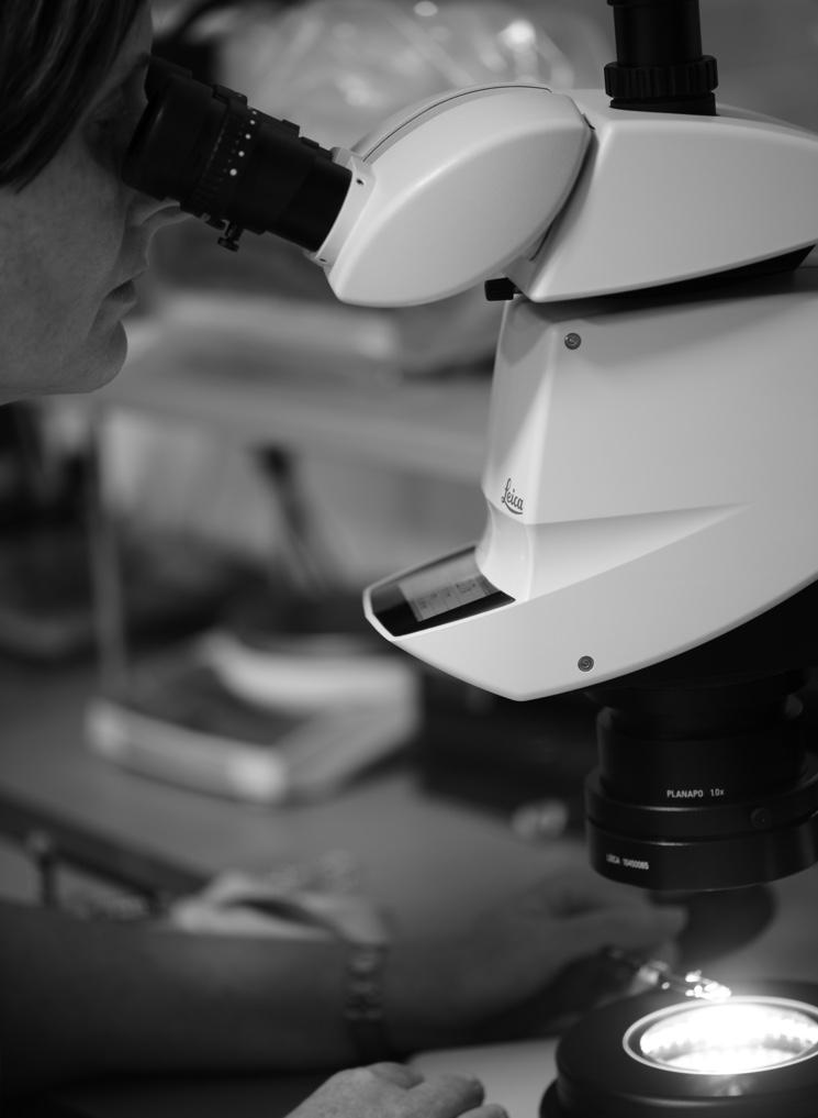 Как определить синтетические драгоценные камни