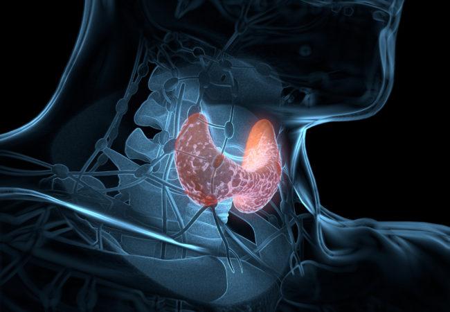Нарушение нормальной работы желез внутренней секреции. Причины сбоев в работе гормональной системы