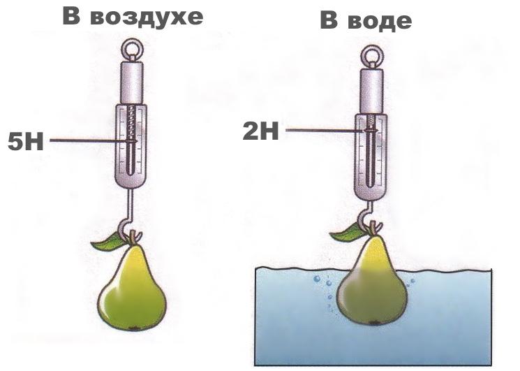 Уменьшение веса груши в при погружении в воду