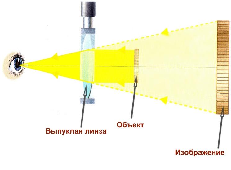 uvelicheniye-izobrazheniya-cherez-vypukluyu-linzu.jpg