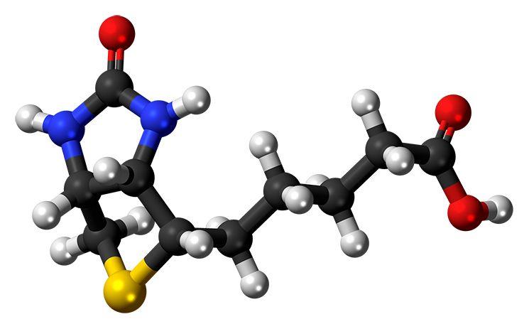 Структура витамина Б7